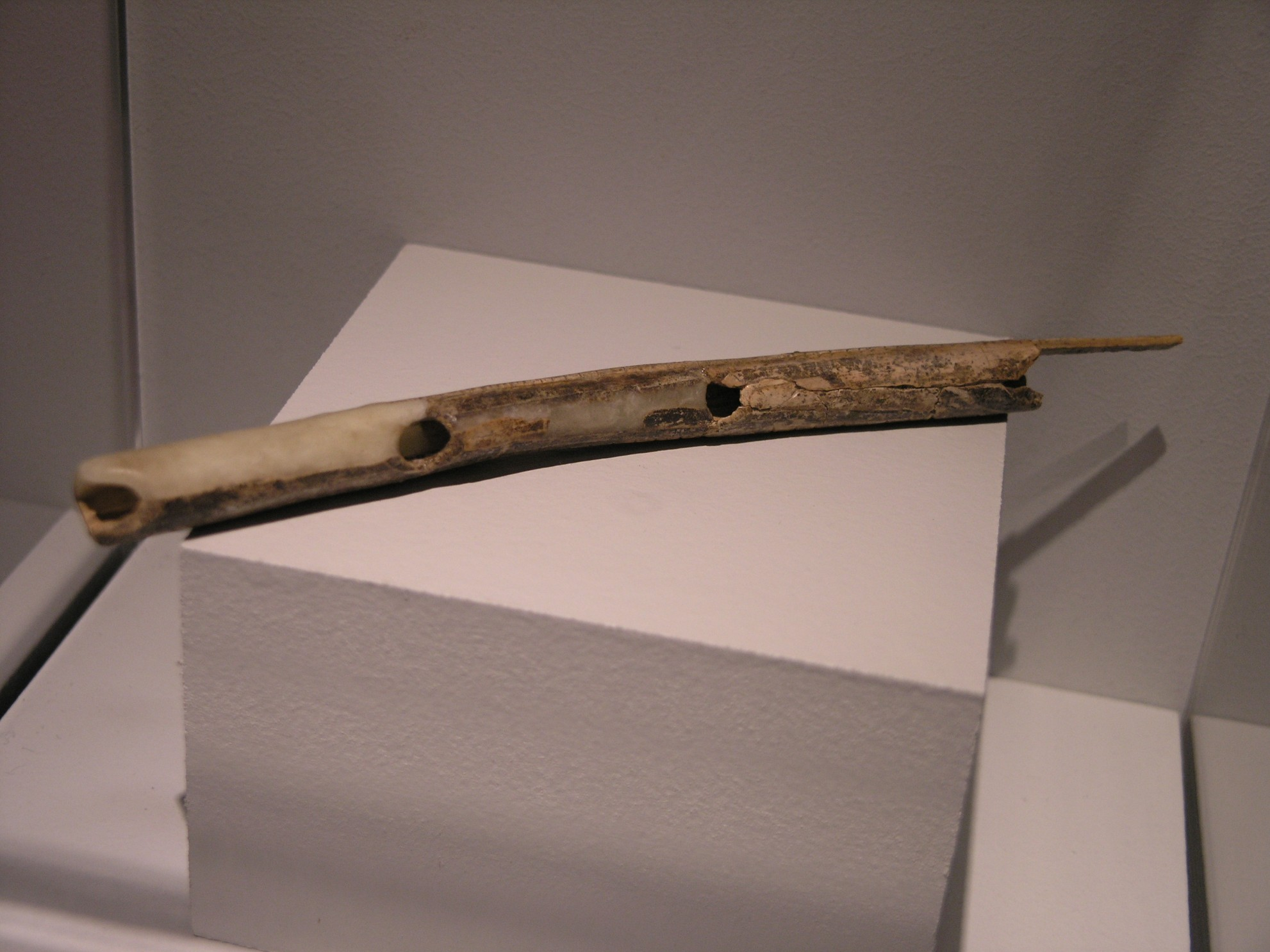 Variantenreiches Musizieren bereits in der Eiszeit