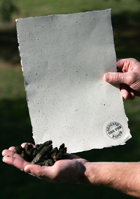 Papier aus Känguru-Kot
