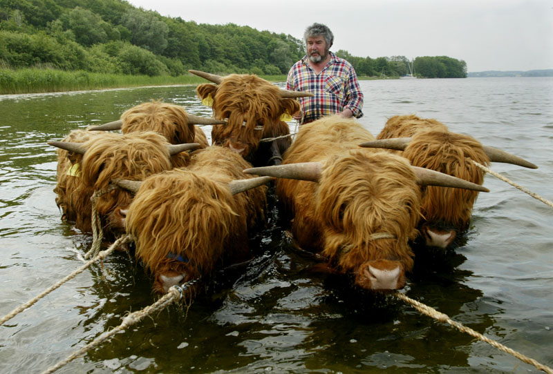 Plöner See bei Bosau