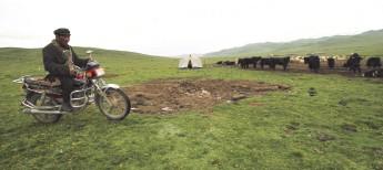 Wirtschaftswachstum und soziale Ausgrenzung in Tibet