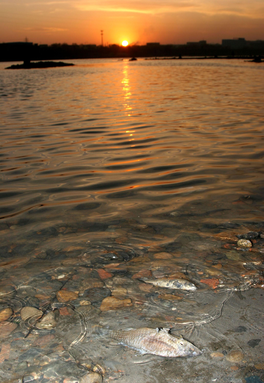 Panikkäufe von Trinkwasser und Massenflucht aus Chinas Millionenstadt Harbin