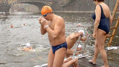 Mutige Schwimmer