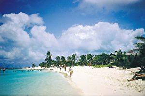 Strand von Los Roques (