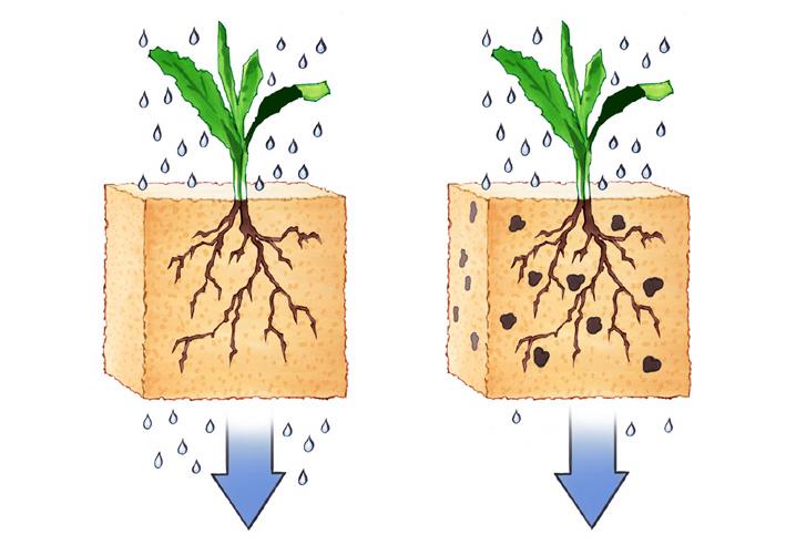 Für Windeln und Wüsten – Deutscher Chemiker entwickelt speziellen Wasserspeicher