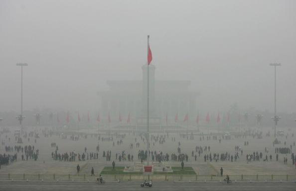 Der chinesische Umweltaktivist Wen Bo