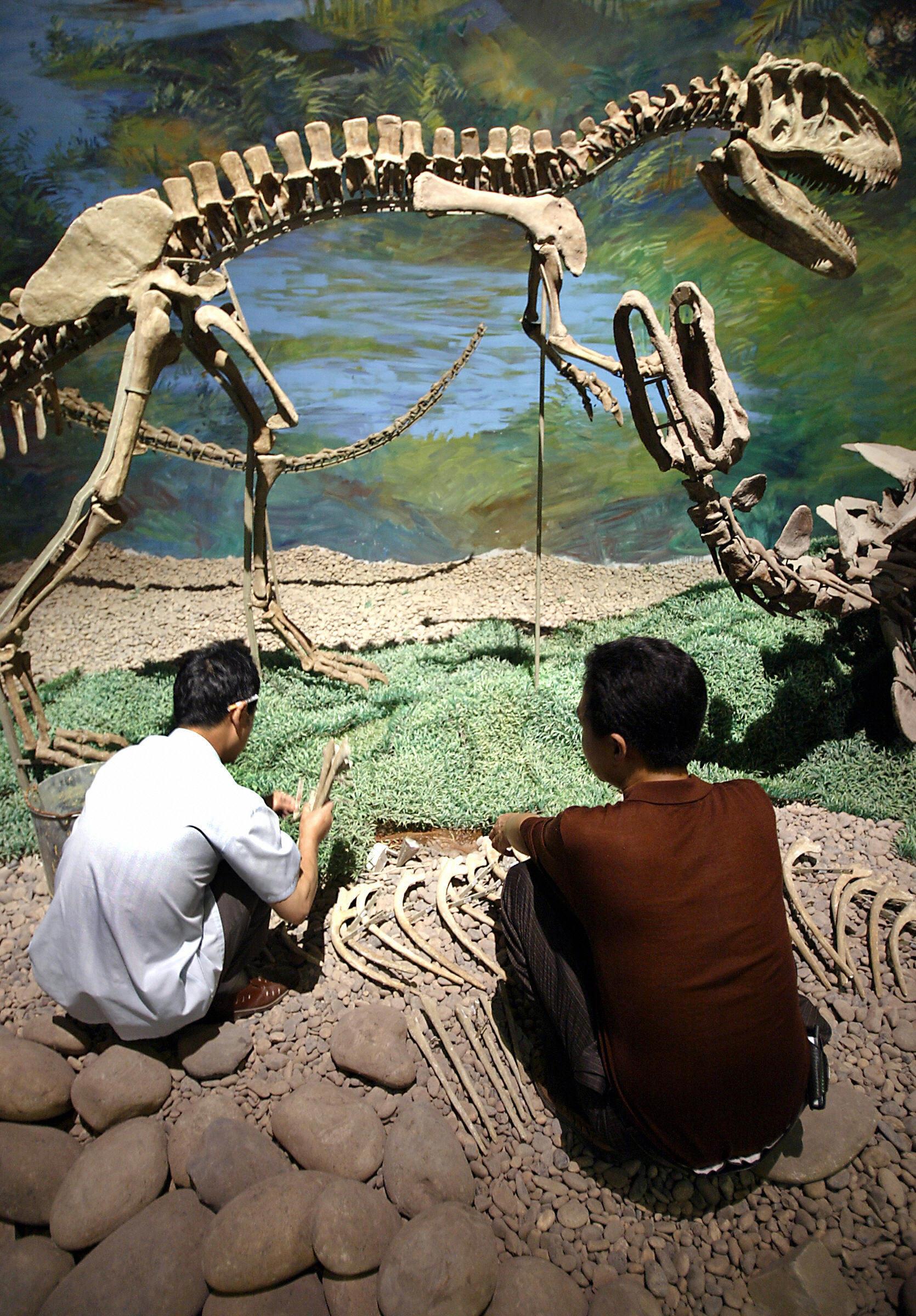 Riesiges Dinosauriergrab in Asien entdeckt