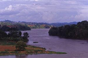 Blick auf den Dschungelfluss Rio San Juan. (