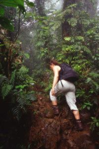 Beliebt bei Touristen: Besteigen des Vulkans Maderas auf der Isla de Ometepe. (