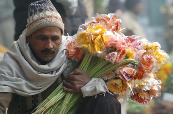 Blumen schenken Freude