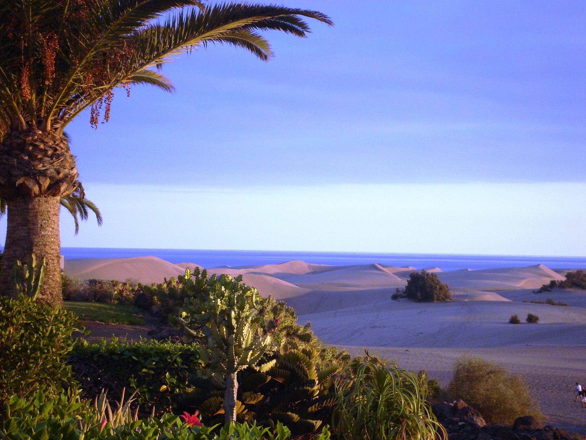 Gran Canaria: Aktivurlaub oder einfach genießen …