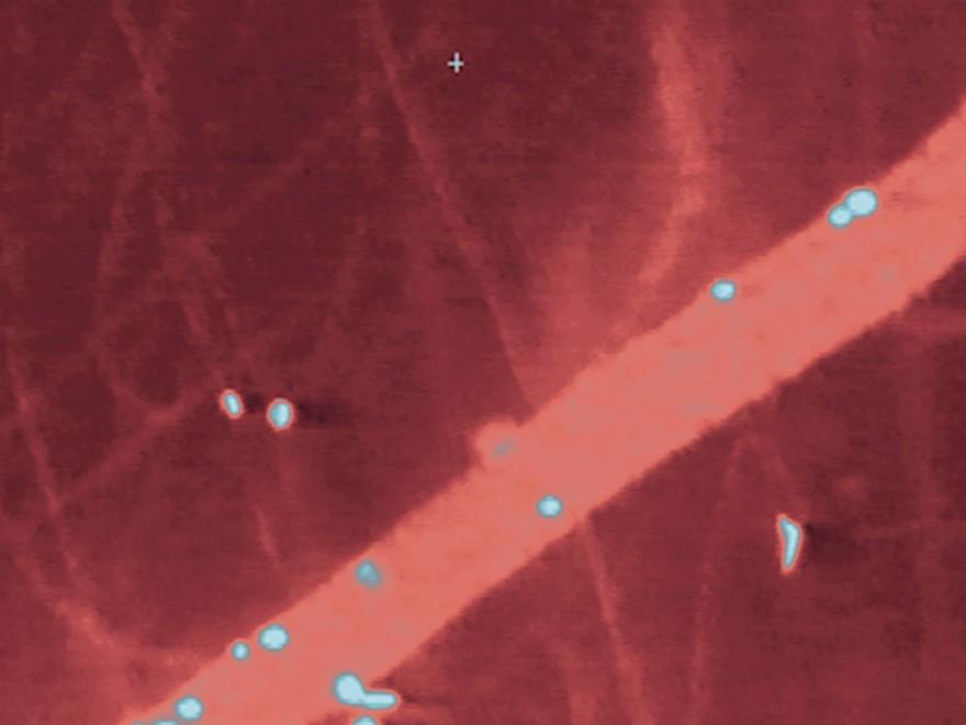 Warum Stammzellen das Herz reparieren