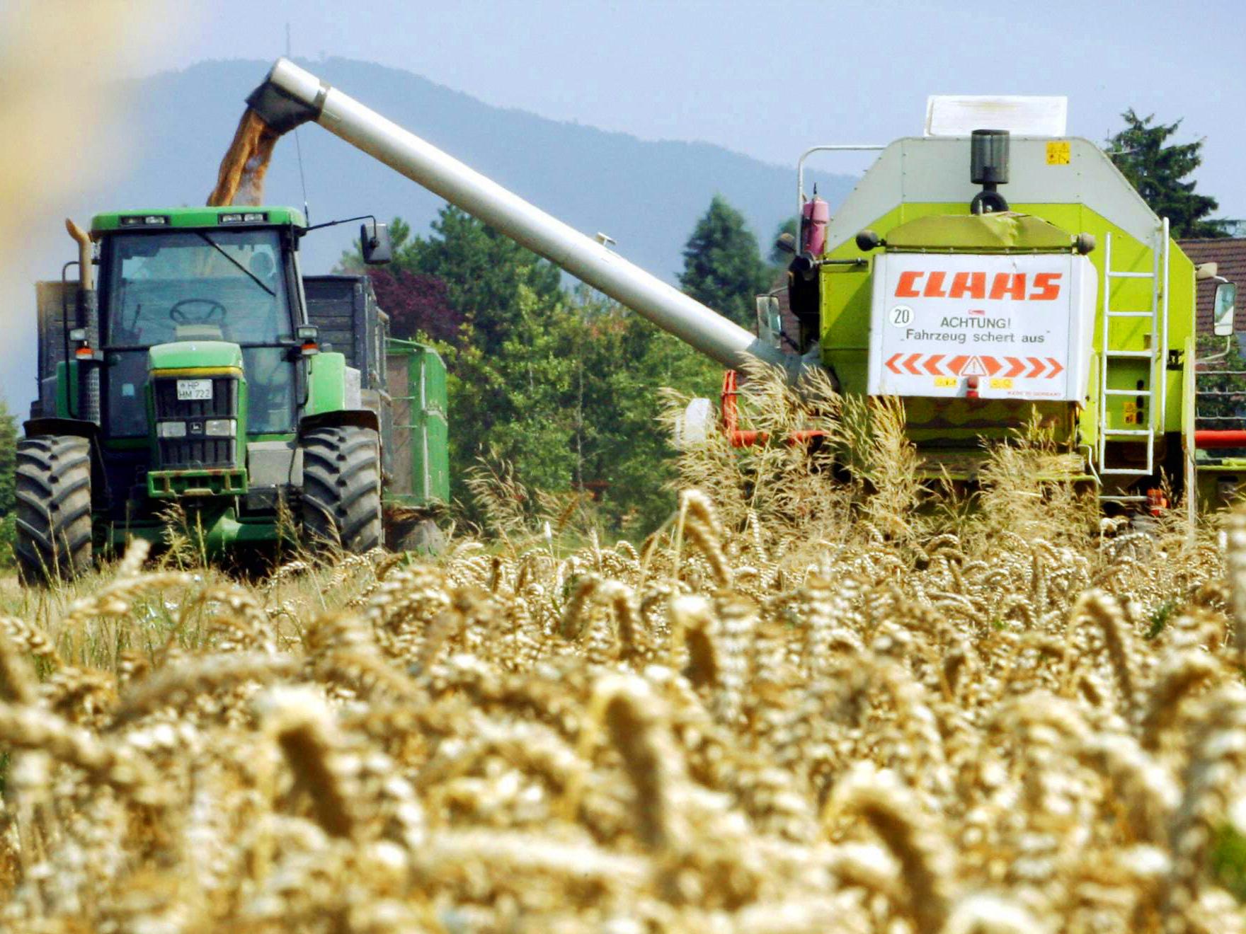 Weltweite Lebensmittelknappheit