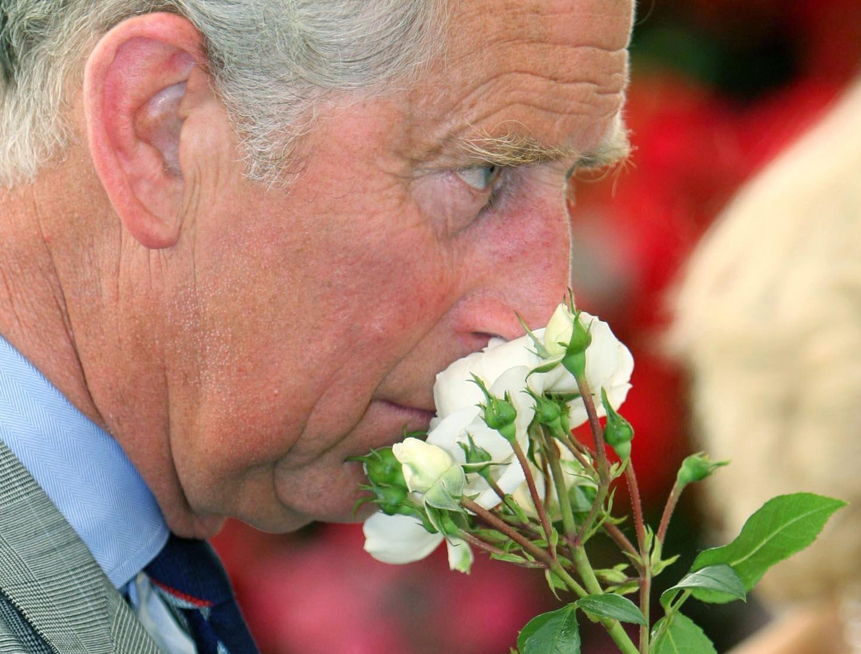 Augenblicke seiner Königlichen Hoheit