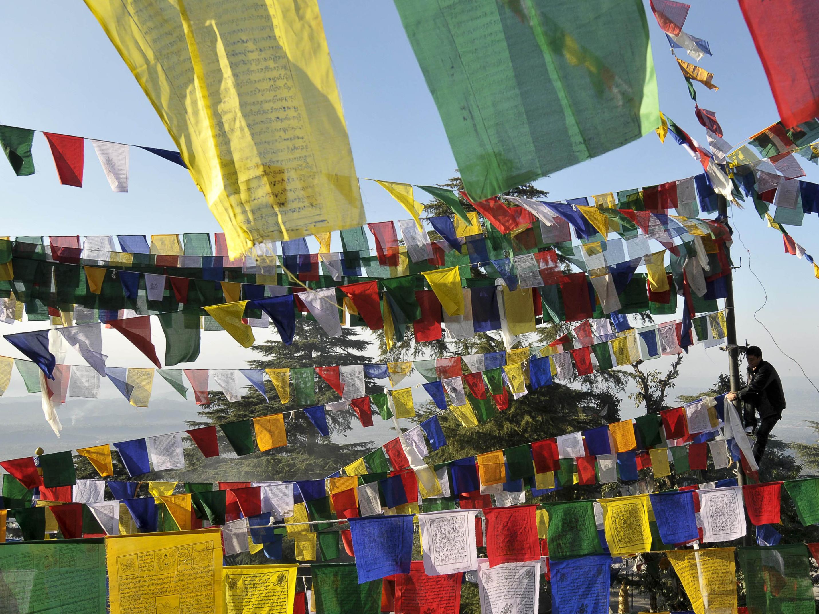 Tibetisches Windpferd