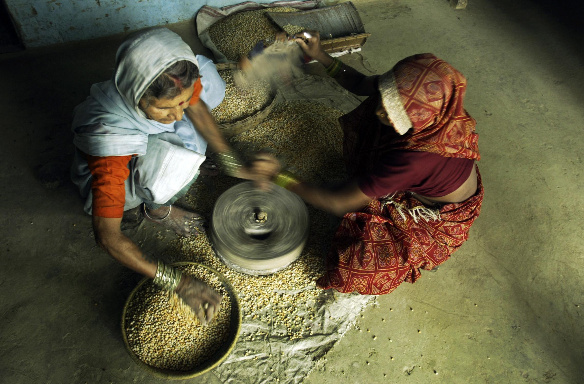 Öko-Landwirtschaft und gesunde Ernährung