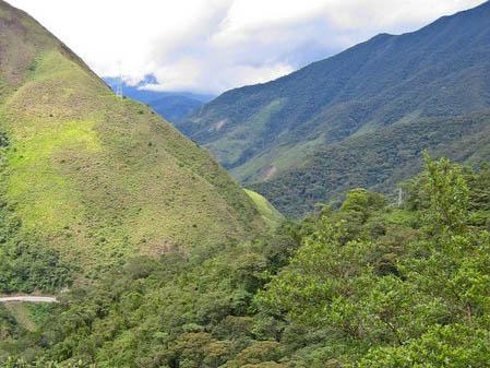 Von Anden-Erlen, Nachtfaltern und Meerschweinchen