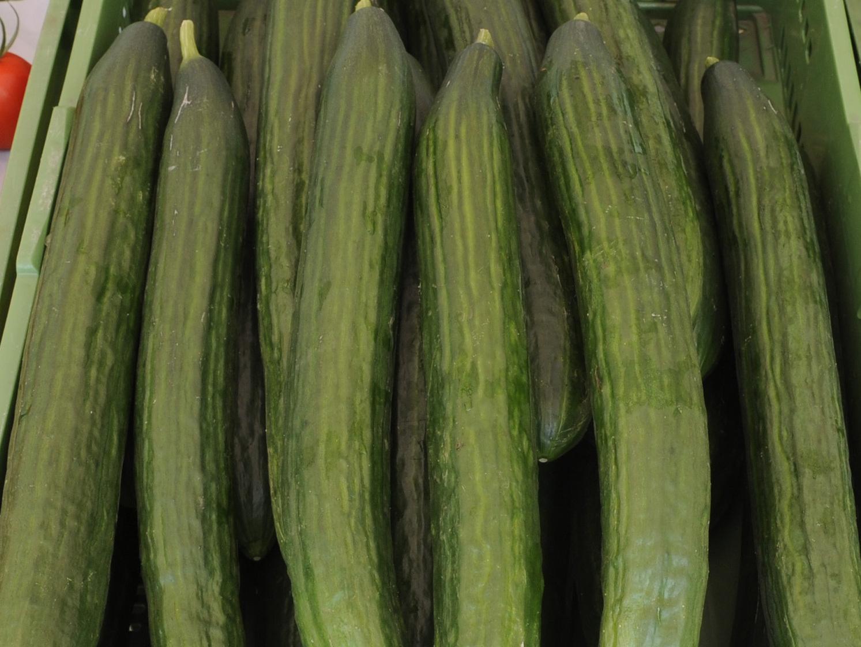 Neuanfang für krumme Gurke und knorrige Karotte