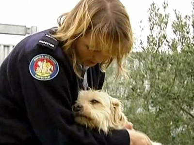Australian Family's Dog Found After 9 Years