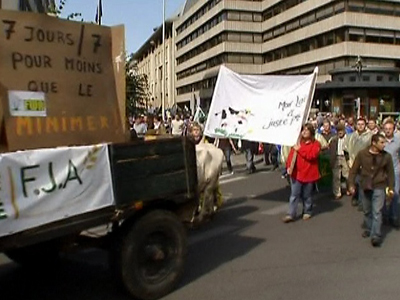 Dairy Farmers Protest Milk Price Collapse