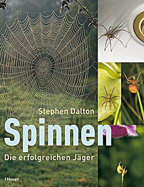 Spinnen ‒ Die erfolgreichen Jäger: Stephen Dalton, Gebundene Ausgabe, 208 Seiten, Haupt Verlag, 1. Auflage vom 1. April 2009, ISBN-10: 3258074453, ISBN-13: 978-3258074450, Originaltitel: Spiders. The Ultimate Predators, Format: 28,4 x 22 x 1,8 cm, Preis: EUR: 29,90
