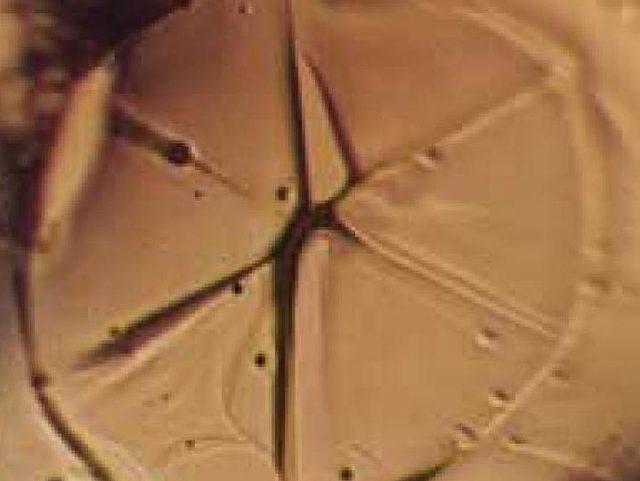 Wenn Eis anfängt zu schmelzen, sieht der sich dabei verformende Kristall aus wie das chinesische Schriftzeichen für Wasser.