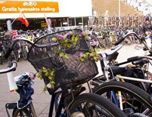 Ob Rosen oder Tulpen, Blumen müssen es sein in Amsterdam.