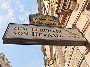 """Auf gut Wienerisch ist ein """"Lercherl"""" eine Lerche. Hier trafen wir Maya Hakvoort vor einem Auftritt."""