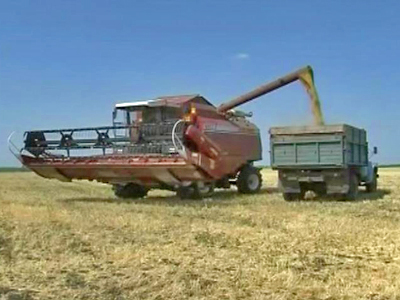 Russia: Grain Export Ban Comes Into Force