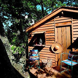 Baumhaus Frankreich garnier schrauben finest best tree house images on