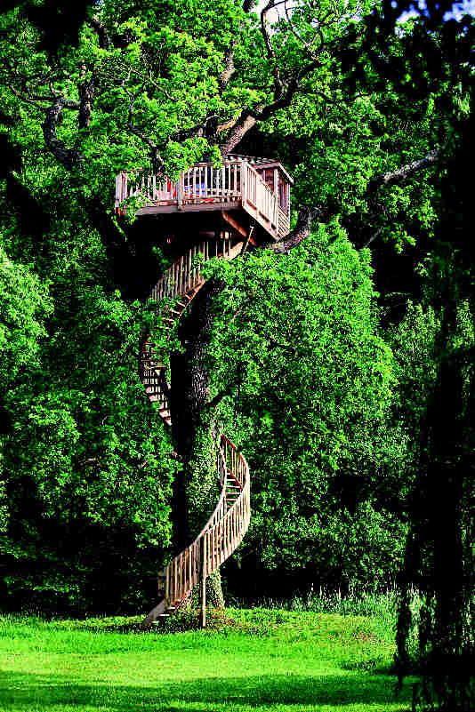Baumhaus Frankreich normandie frankreich eiche höhe 10 m aus traumhafte baumhäuser