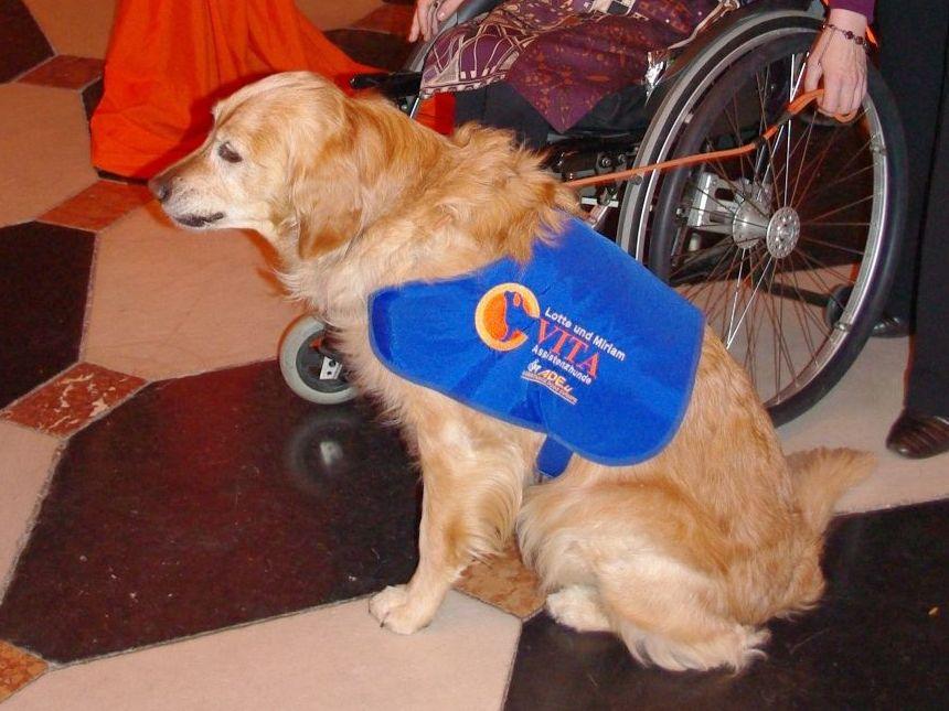 Charity-Gala für Hund und Lebensfreude