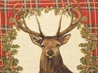 Mit wildem Weihnachten die heimische Natur schützen