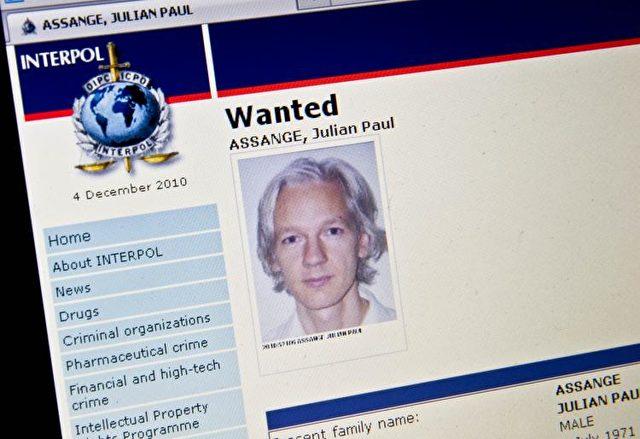 """Wikileaks-Gründers Julian Assange auf der """"Gesucht""""-Seite von Interpol. Foto: Nicholas Kamm/AFP/Getty Images"""