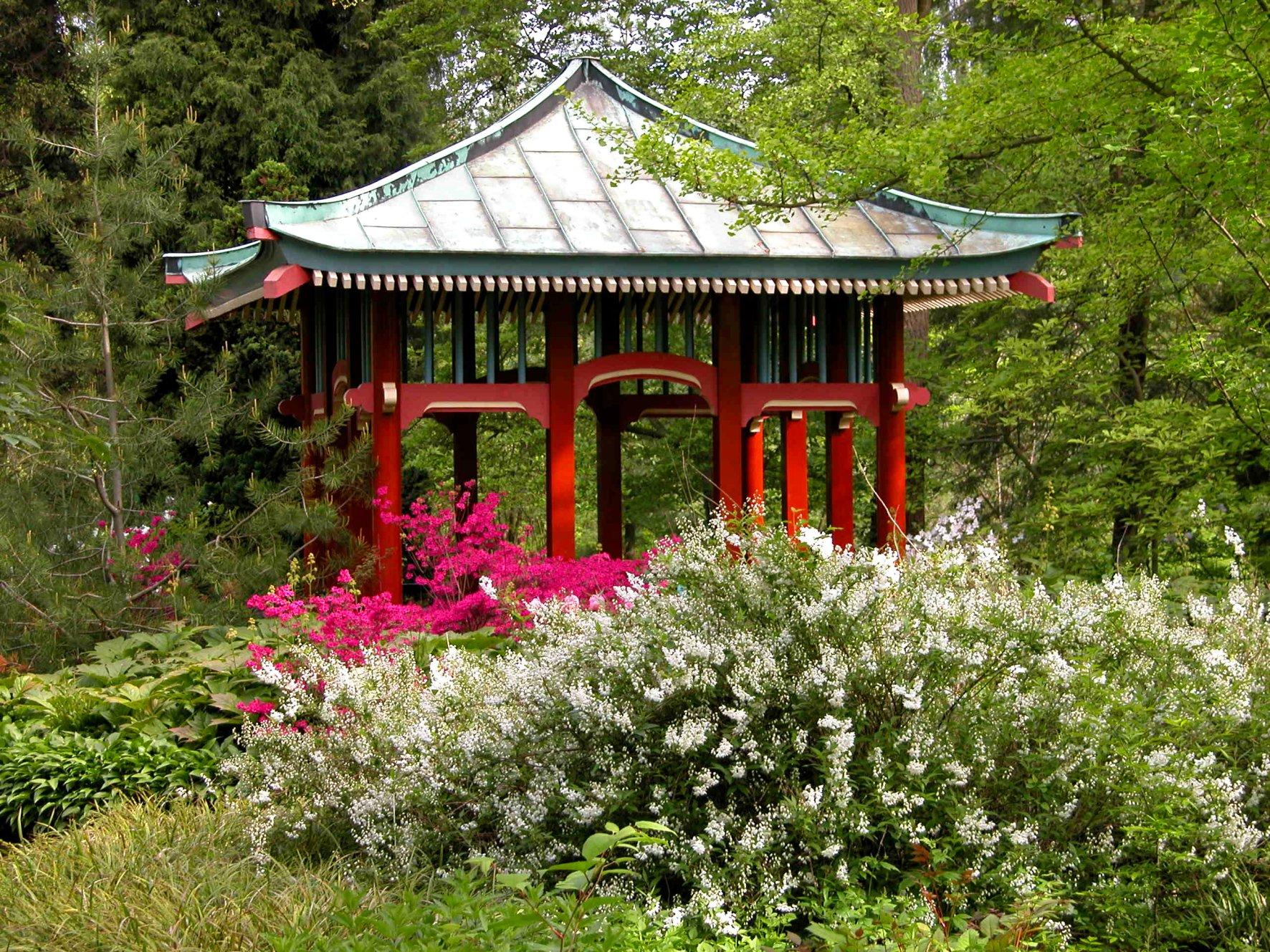 japan pavillon leere r ume und exotisches feeling all berall foto i haas botanischer. Black Bedroom Furniture Sets. Home Design Ideas