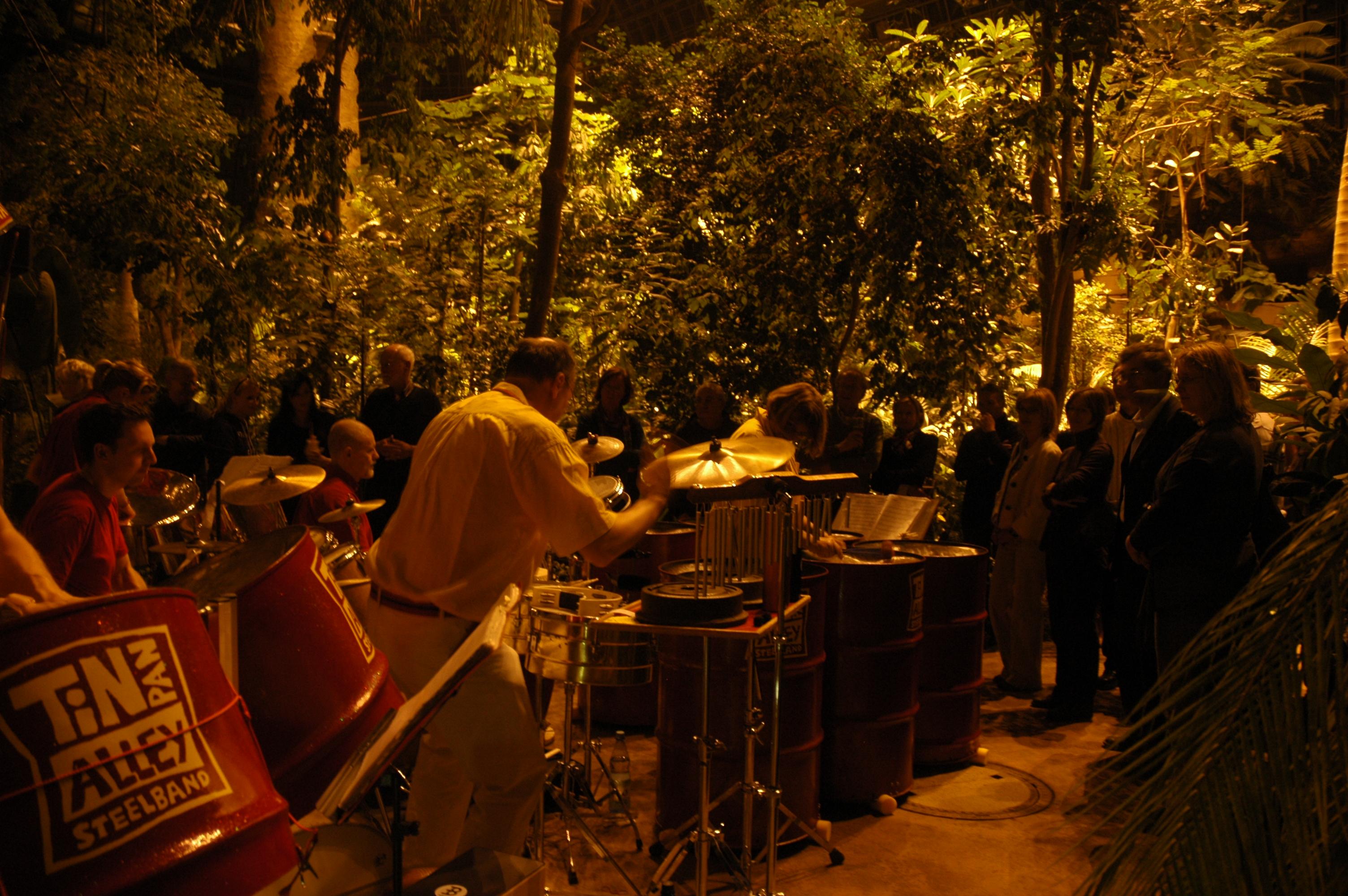 tropische nacht im botanischen garten live musik im gro en tropenhaus foto g hohlstein. Black Bedroom Furniture Sets. Home Design Ideas