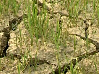 Chinesisches Regime für Staudamm-Projekte kritisiert
