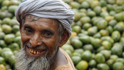 Beliebte Mangofrüchte in Indien