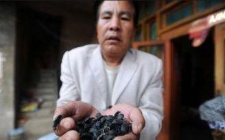 Giftiger Chrom-Abfall fordert Todesopfer in China