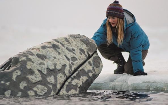 Kino Kino: Der Ruf der Wale – ein Familienfilm