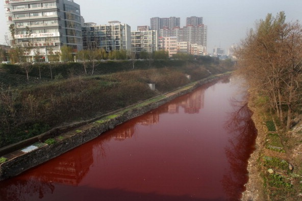 In manchen Regionen in China ist der Zustand der Umwelt katastrophal. Foto: AFP/Getty Images