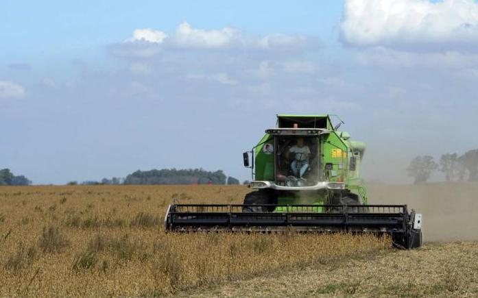 Das beliebte Gerücht um Monsanto in Argentinien