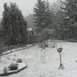 Garten nach 10 Minuten Schnee und Eis durch den Blizzard.   Foto: SFR