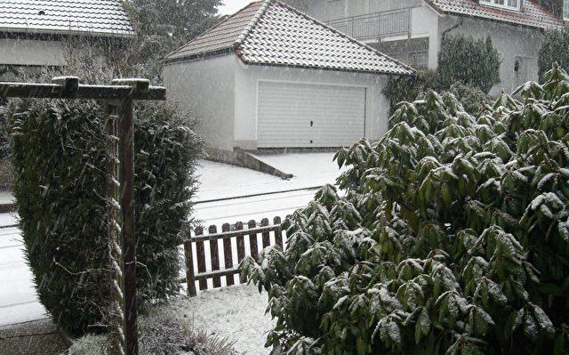 Blizzard. Foto: SFR