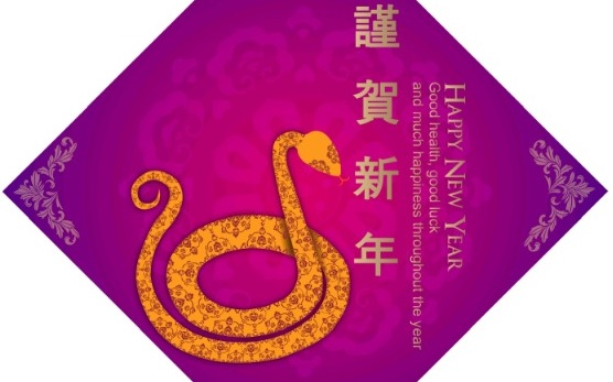 Happy New Year zum Jahr der Schlange in China   Foto / Bild: Wendy Yu / The Epoch Times