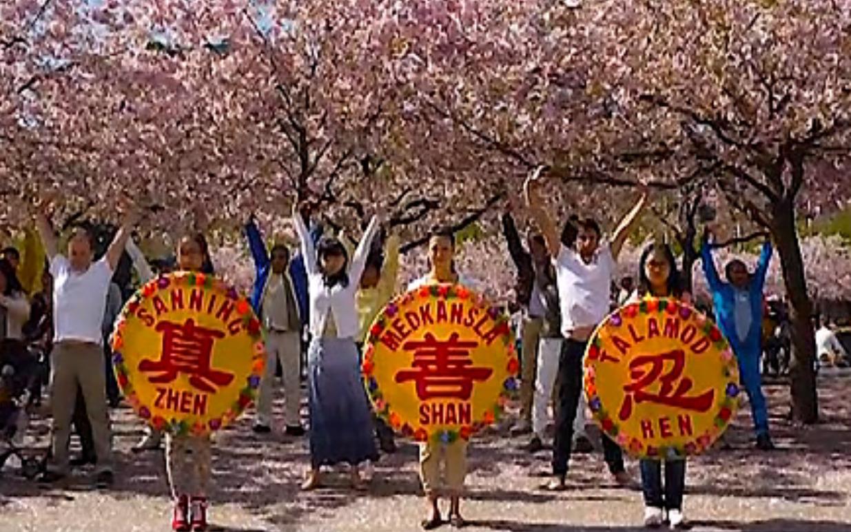 Die Welt feierte den 21. Falun-Dafa-Tag