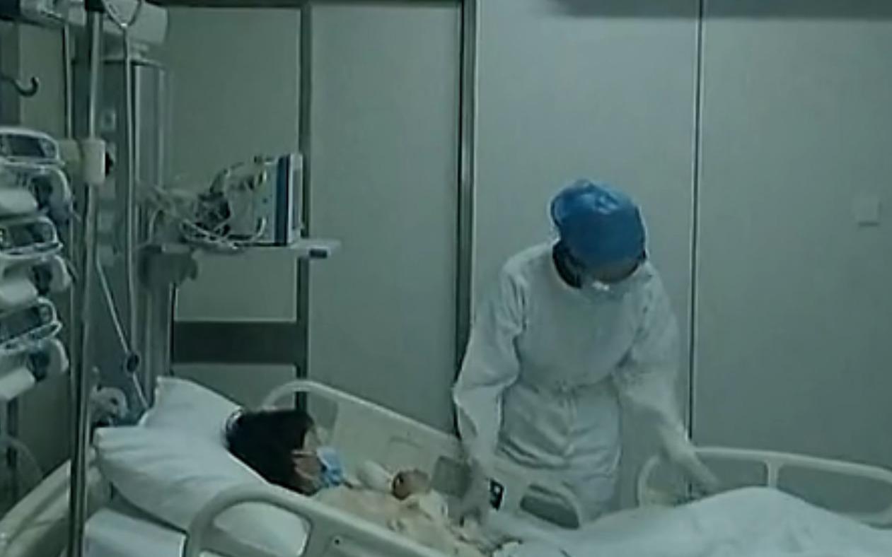 China: Schweine- und Vogelgrippevirus könnten tödliches Hybridvirus bilden