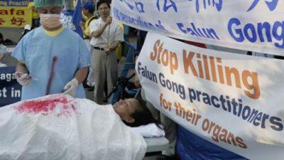 """Transplantation in China: """"Die Niere stammt von einem Falun Gong-Praktizierenden"""""""