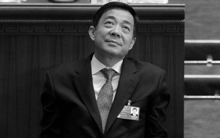 "China: ""Bo Xilai-Anklagepunkte sind nur Nebelgranaten"""
