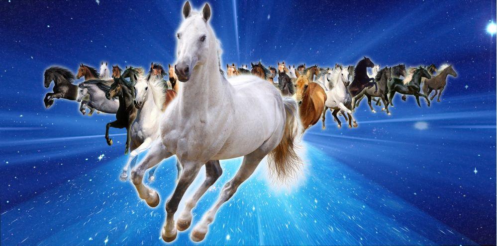 Was man in China über das Tierkreiszeichen des Pferdes sagt