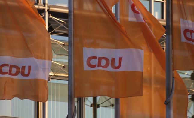 FDP sieht CDU wegen AfD vor Zerreißprobe
